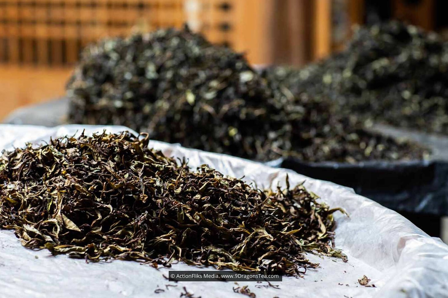 traditional chinese tea making Loose Tea Leaves in Piles
