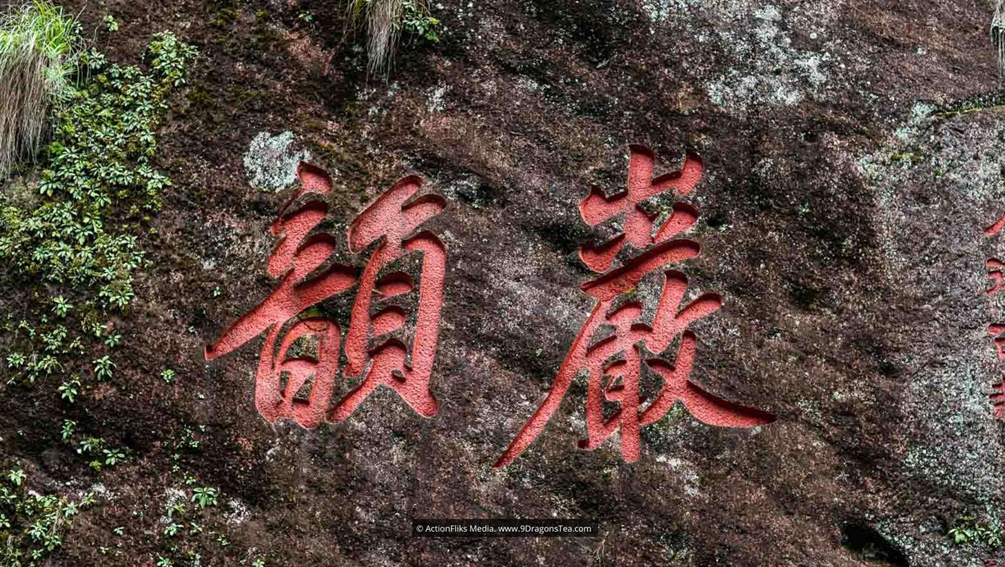 wuyishan landscape rock terroir yen yun close up