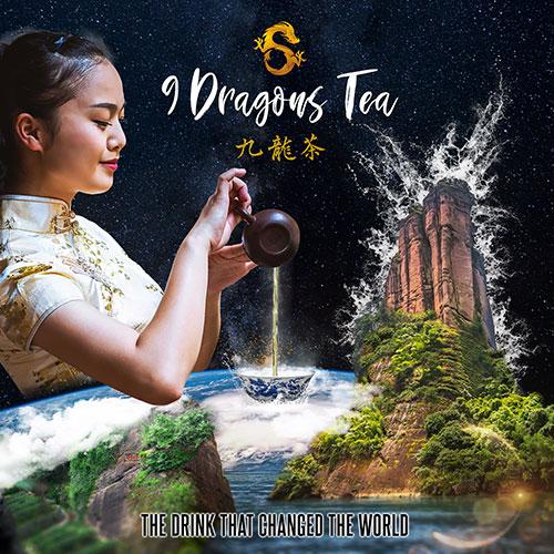 9 Dragons Tea Poster Square