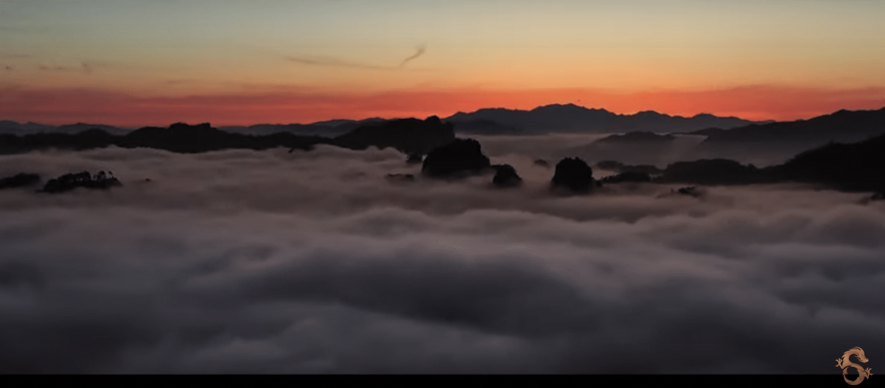 9 Dragons Tea Trailer A