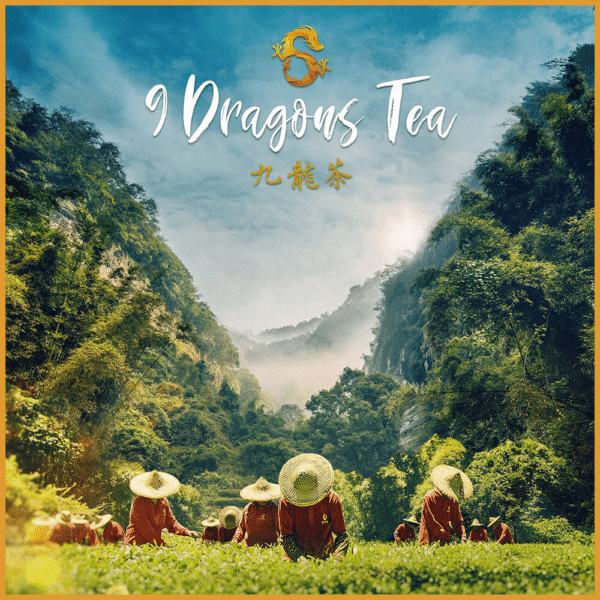 9 dragons tea - tea field poster - feature image