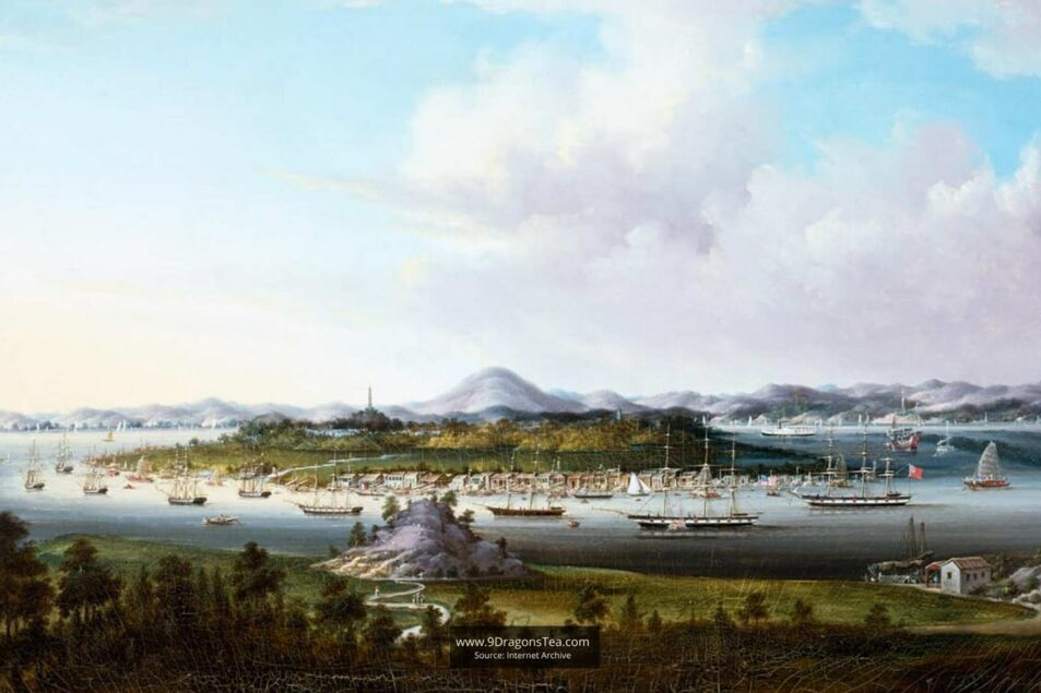 Chinese tea history historical painting tea trade canton guangzhou harbor c1850 by sunqua
